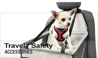 Dog Travel / Safety